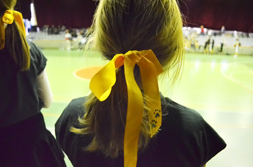 Cheerleading ribbons