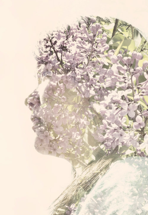 Double exposure with lilacs. I did make color adjustments in Photoshop.