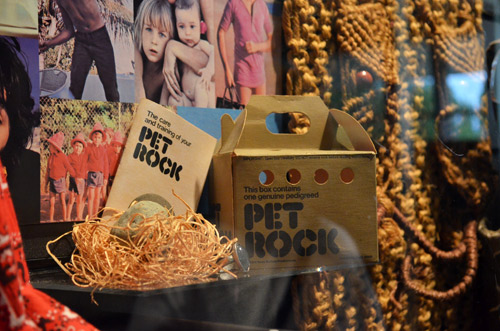 Pet Rock in Gerald Ford Museum