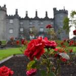 Kilkenny Rose Garden