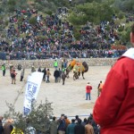 Camel Wrestling in Bodrum