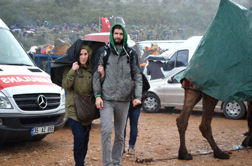 Rain at camel wrestling