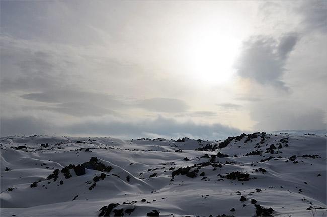 Snowy roadside