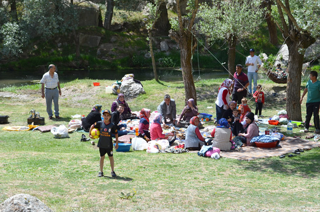 turkishpicnic