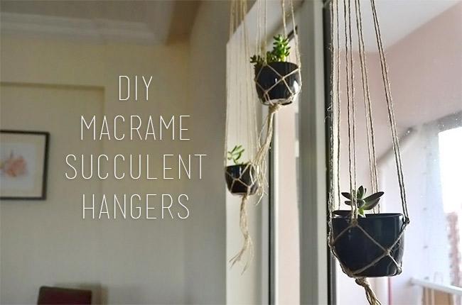 DIY Macrame Succulent Hangers