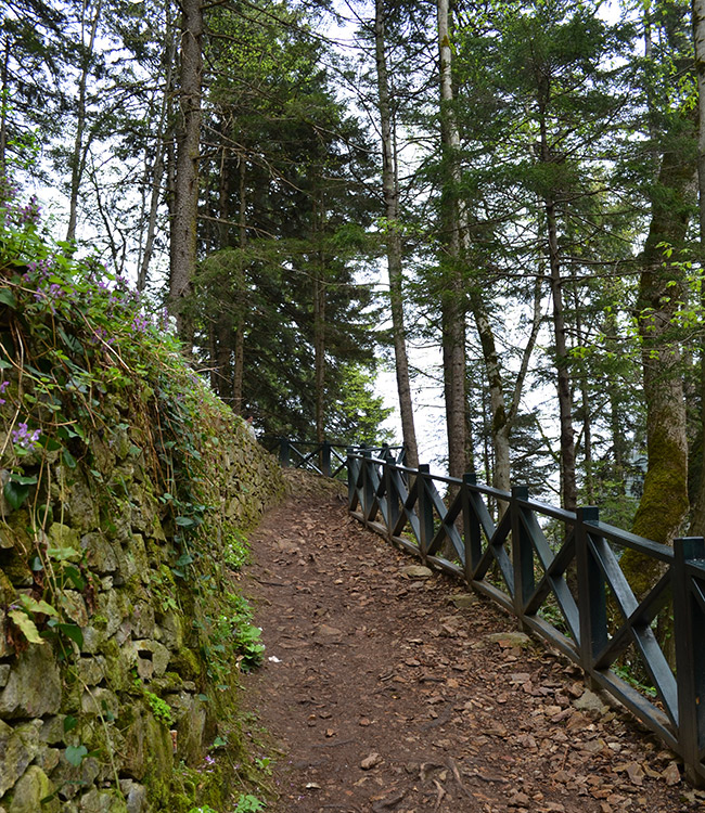 Steep walking path