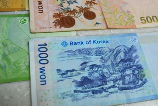 Korean Won Detail