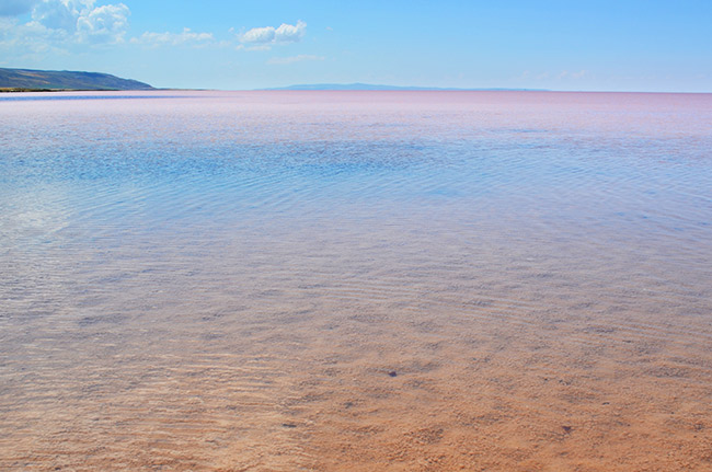 Pink Tuz Golu in Turkey