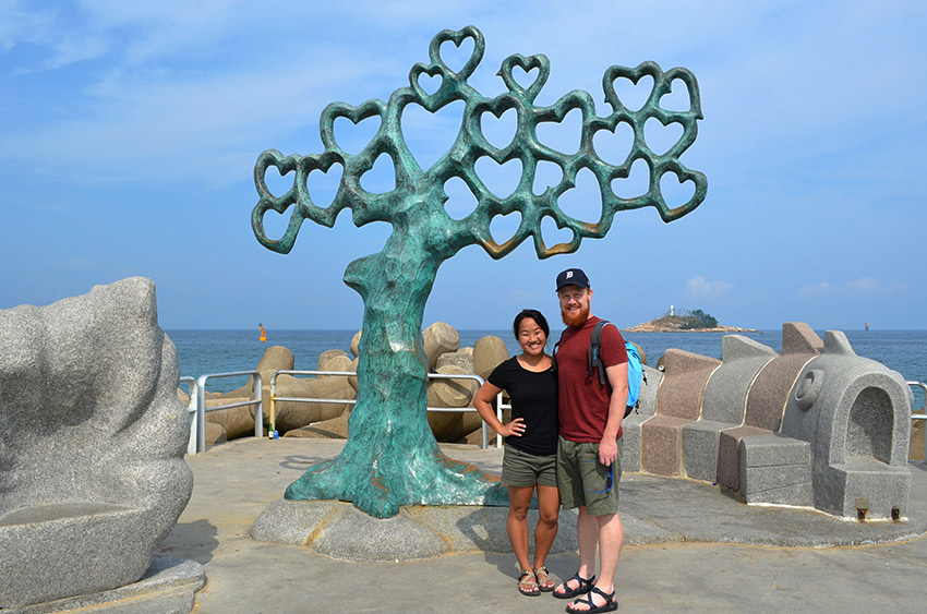 Sokcho tree of hearts