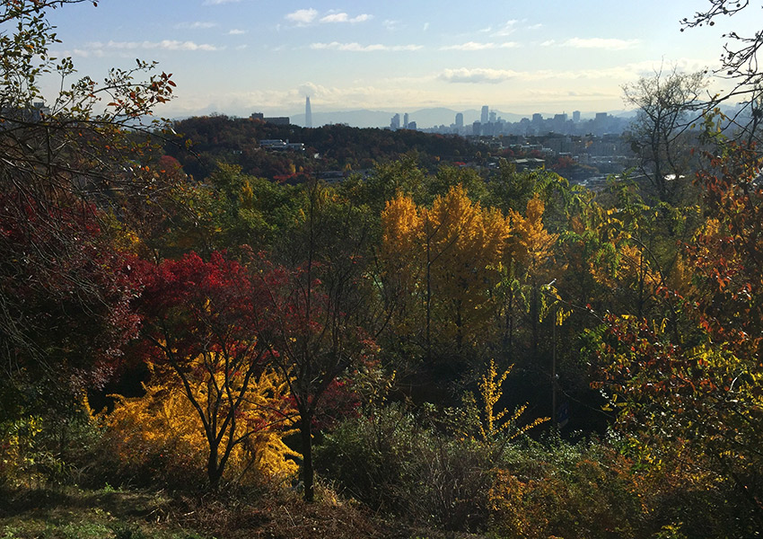 Fall colors in Seoul
