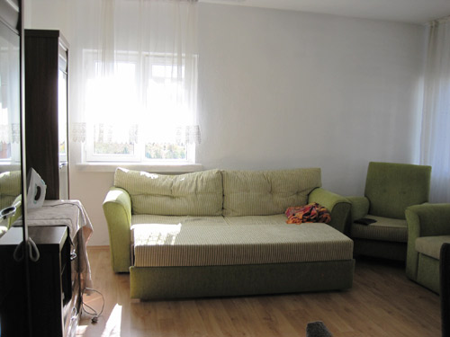 Living room and comfortable couch