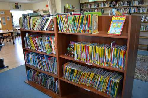 Picture and step reading books