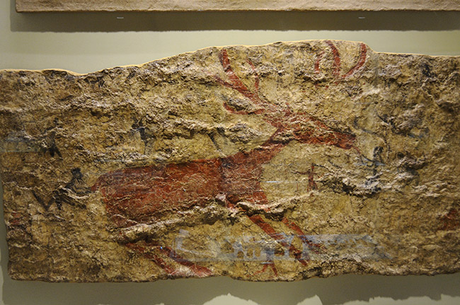 Painting of animal on rock