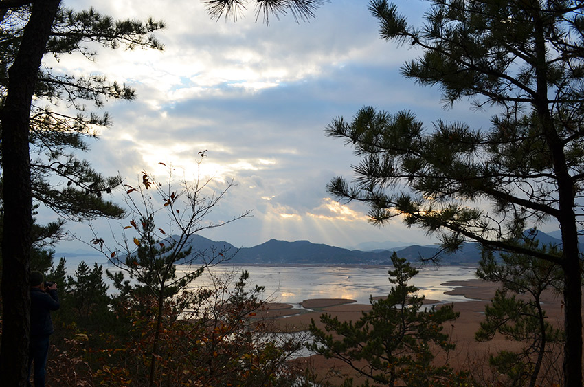 Suncheon Ecological Park view