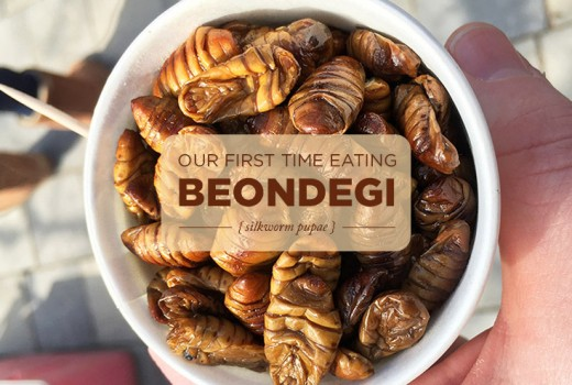 Eating Beondegi (silkworm pupae) for the first time in Korea.